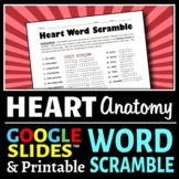 Heart Anatomy Word Scramble - Fun Review Worksheet