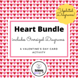 "Heart BUNDLE ""Anatomically Correct"" Heart Valentine & Over"
