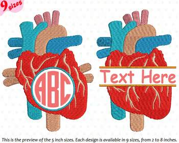 Heart Circle Split Embroidery Design school biology Medic science Anatomy 227b