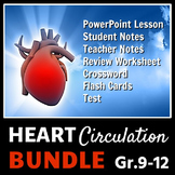 Heart Circulation - LESSON BUNDLE