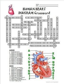 Heart Crossword with Diagram {Editable}