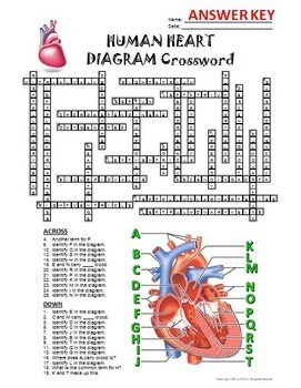 Heart Crossword with Diagram {Editable}