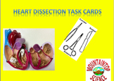Heart Dissection Task Cards and Worksheet