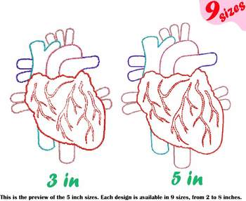 Heart Outline Embroidery Design science  biology Medic Organs Anatomy 202b