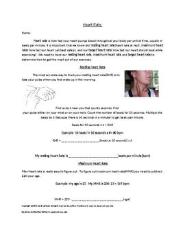 Heart Rate Worksheet