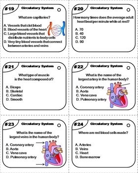 Heart Task Cards/ Circulatory System Task Cards (Human Body Systems Task Cards)
