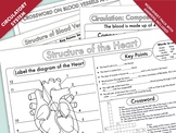 Heart and Circulation Worksheet Pack