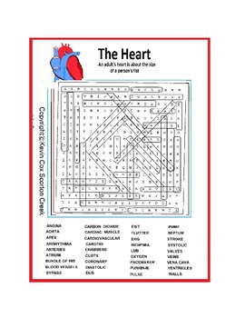 Heart and Circulatory Word Search or Wordsearch