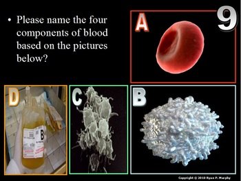 Heart, Blood, Circulatory System PowerPoint Quiz Game