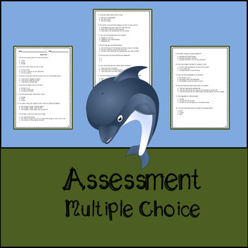 Heart of a Dolphin by Catherine Hapka Assessment, Questions, and Vocabulary