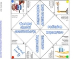 Thermal Energy Cootie Catcher