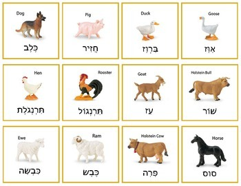Hebrew Farm Animals - matching game, memory game, and more!