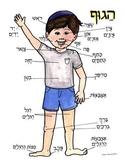 Hebrew Poster Body parts