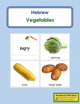 Hebrew - Vegetable Cards - Lrg