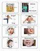 Hebrew Vocabulary Cards: Body Parts