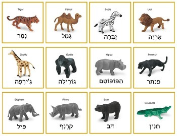 Hebrew Wild Animals - matching game, memory game, and more!