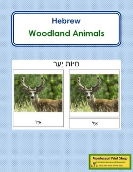 Hebrew - Woodland Animal Cards