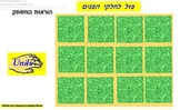 Hebrew face part memory game