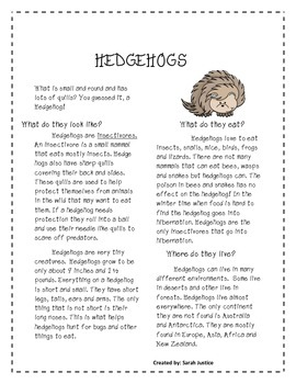 Hedgehog Research activity ( Hedgehog Bakes a cake)