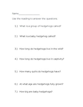 Hedgehogs: Nonfiction Reading and Questions