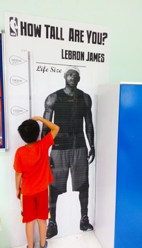 Height Chart - Lebron James Life Size Poster (about 4 by 8 feet)