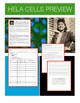 Henrietta Lacks: Science Literacy