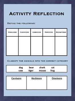 Herbivore, Carnivore, & Omnivore Extension Activity
