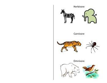 Herbivore, Carnivore, Omnivore Foldable