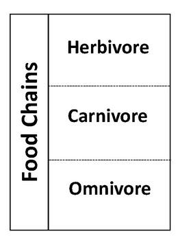 Herbivores carnivores omnivores teaching resources teachers pay herbivore carnivore omnivore foldable herbivore carnivore omnivore foldable ccuart Image collections
