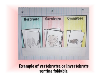 Herbivore, Carnivore, or Omnivore Sorting Activity Foldable