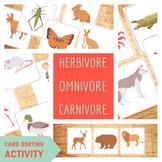 Herbivore Omnivore Carnivore - Food Chain - Card Sorting Activity