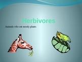 Herbivores Carnivores Omnivores