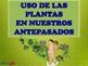 Herbolaria en Mesoamerica MATERIAL PARA IMPRIMIR