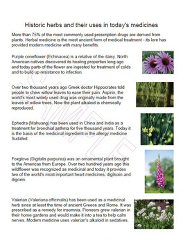 Herbology By Author Sandra Wilson Teachers Pay Teachers