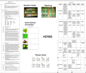 Herbs, a unit of study, using the 5 senses