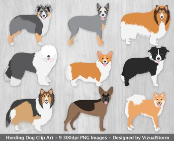 Herding Dogs Clip Art, Hand Drawn Herding Dog Breed Illustration Series