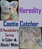 Genetics and Heredity Activity