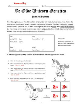 heredity genetics bundle mendelian genetics activities bundle. Black Bedroom Furniture Sets. Home Design Ideas