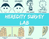 Heredity Class Survey Lab