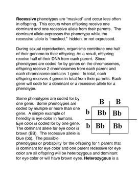 Heredity Common Core Activity