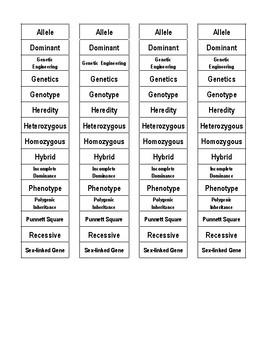 Heredity Cut-n-Paste Vocabulary