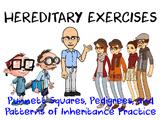 Heredity Pedigree & Genetic Diagram Exercise