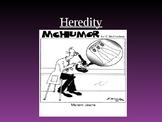 Heredity Power Point