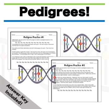 Genetics Worksheets Packet