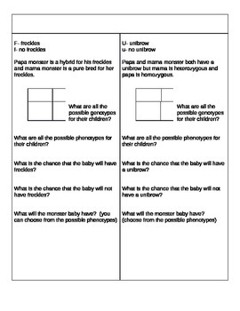 Heredity Punnett square group activity practice
