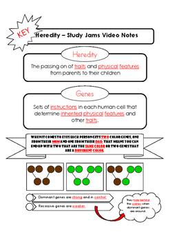 Heredity Study Jams Video Notes