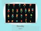 Heredity Unit - (207 PowerPoint Slides)