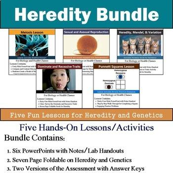 Heredity Unit - Genetics Unit (Five 90min Lesson Bundle with Assessment)