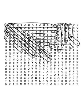 Heredity Wordsearch with Key