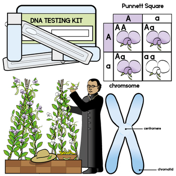 Heredity and DNA Clip Art